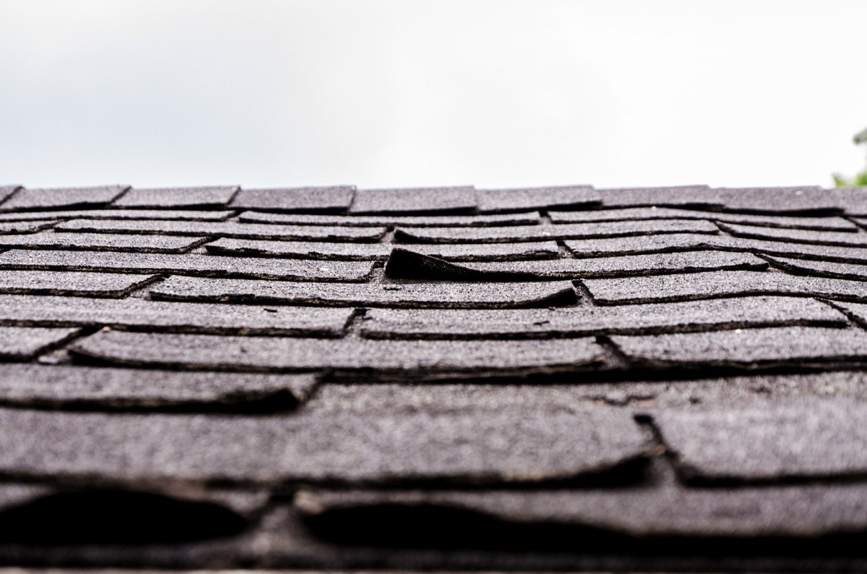 Difference Between Shakes & Shingles
