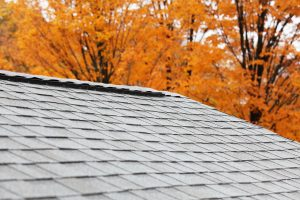 Bright orange autumn trees outline a newly installed residential asphalt shingle roof with a modern ridge vent running the length of the roofline.